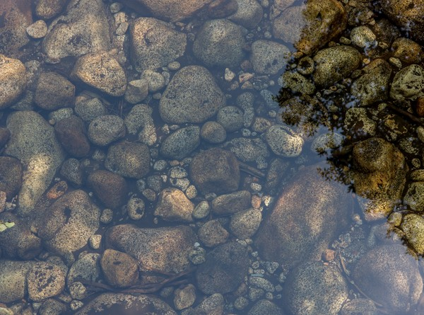 Close-up shot of rocks underwater.